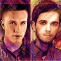 Zedd feat. Hayley Williams – Stay The Night (Nicky Romero Remix)