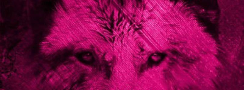 Marco V – Nashoba (Original, Thomas Newson and Jaden Daves Mixes) [Flamingo Recordings]