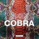 Tony Junior & Dropgun – Cobra (Original Mix) [Doorn Records]