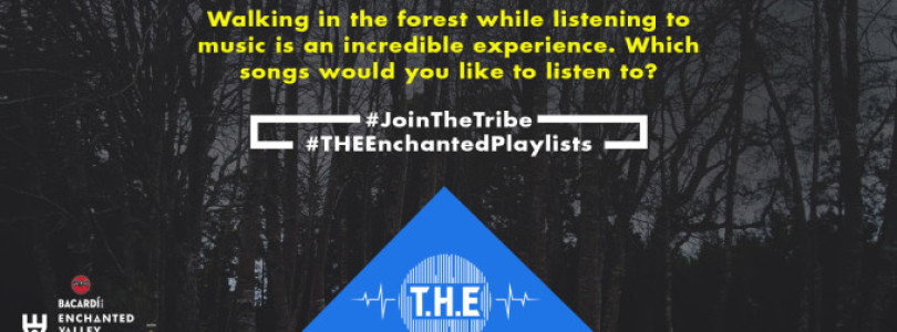T.H.E Enchanted Playlists – Forest Walk Diaries