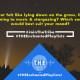 T.H.E Enchanted Playlists – Stargazing Diaries