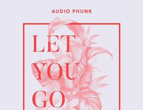 Audio Phunk - Let You Go (Original Mix) out now on IBZ Records!