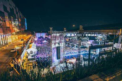 Social Festival