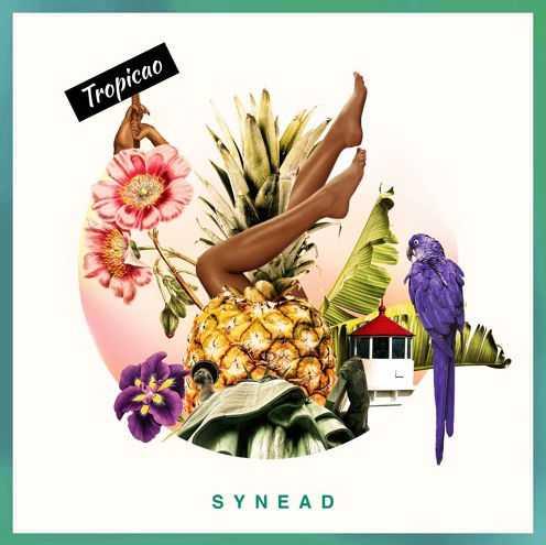 Synead