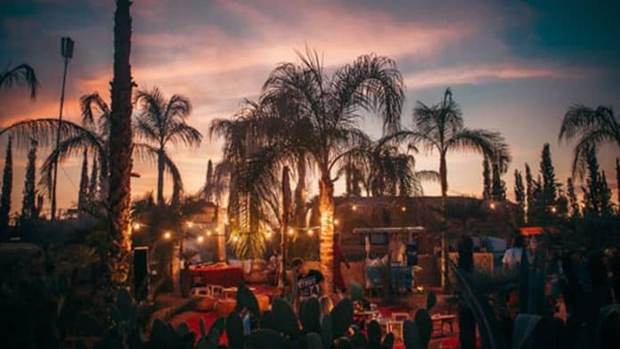 oasis festival 2020