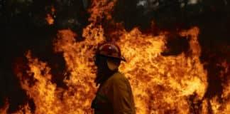 australia fire donations