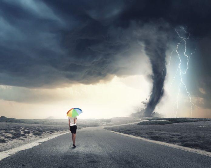 neebu entranced storm