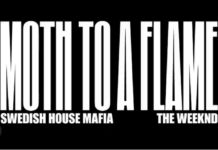 swedish house mafia the weeknd collaboration